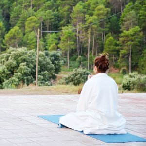 Yin Yoga & Reiki II Retreat